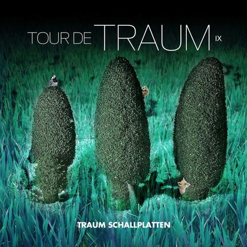 VA – Tour De Traum IX (2014) [Mixed by Riley Reinhold] WEB FLAC