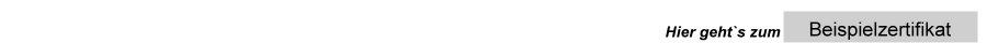 Certified-Shop - BK V - Beispielzertifikat - geprüfter Online Shop - DAS Gütesiegel