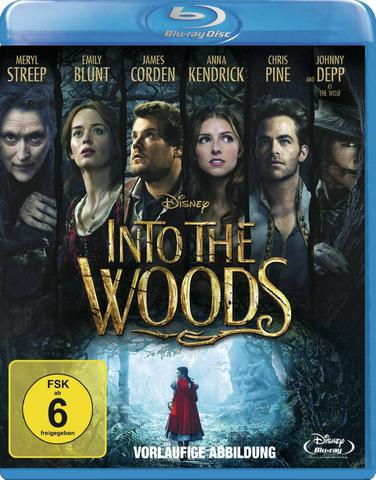 Into.the.Woods.2014.German.DL.1080p.BluRay.x264-CONTRiBUTiON