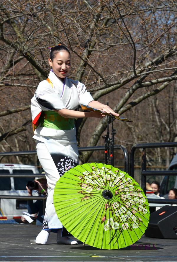 櫻花的舞蹈