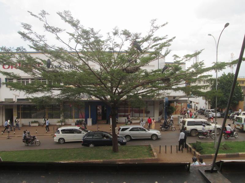 Urlaub 2015 Uganda Dpz646mq
