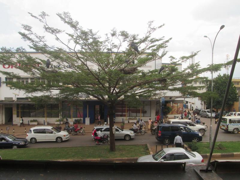 Urlaub 2015 Uganda Kk8cch7w