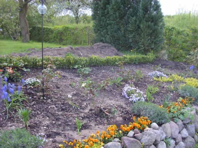rosen, steine, wasser - gärtnern in ostholstein - mein schöner, Gartenarbeit ideen