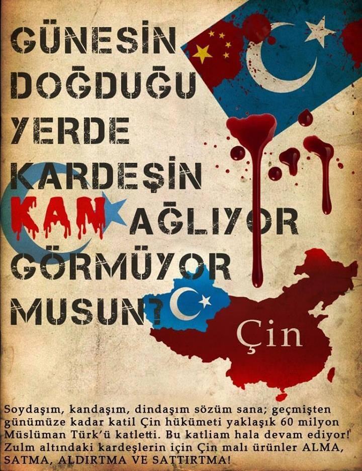 www-yesilakkus-com-yonetimi-ve-ailesi-olarak-kiniyoruz-cin-i