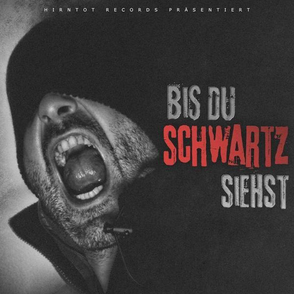 Schwartz - Hurensohn Promocaust