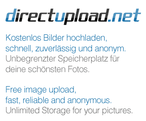 http://fs2.directupload.net/images/150911/yfvw5i85.png