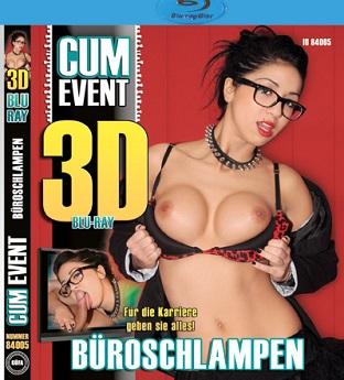 Bueroschlampen 3D German (720p) Cover